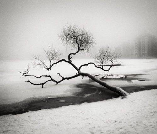 HakandStrand_10_fotografia_invierno_paisaje_belleza_PoesiaVisual_estimulante_StillMoments_BlancoYNegro