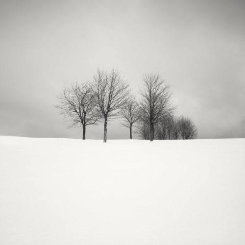 HakandStrand_11_fotografia_invierno_paisaje_belleza_PoesiaVisual_estimulante_StillMoments_BlancoYNegro