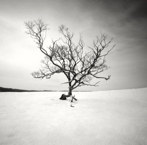 HakandStrand_12_fotografia_invierno_paisaje_belleza_PoesiaVisual_estimulante_StillMoments_BlancoYNegro