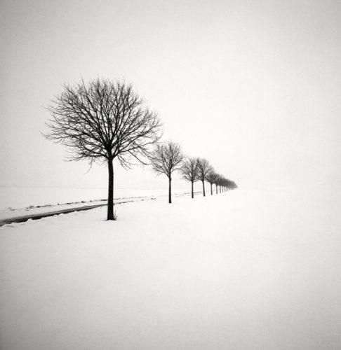 HakandStrand_13_fotografia_invierno_paisaje_belleza_PoesiaVisual_estimulante_StillMoments_BlancoYNegro