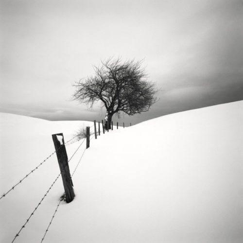 HakandStrand_14_fotografia_invierno_paisaje_belleza_PoesiaVisual_estimulante_StillMoments_BlancoYNegro