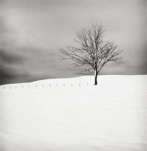 HakandStrand_15_fotografia_invierno_paisaje_belleza_PoesiaVisual_estimulante_StillMoments_BlancoYNegro