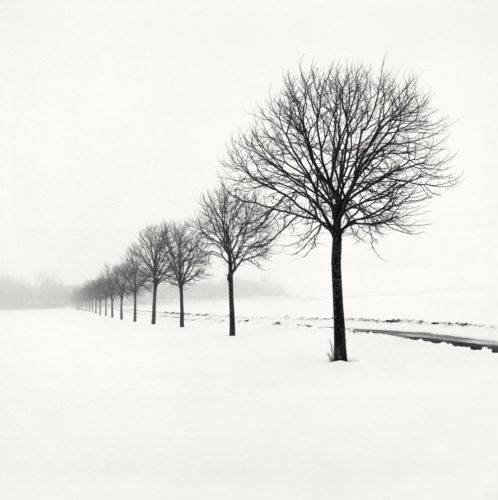 HakandStrand_16_fotografia_invierno_paisaje_belleza_PoesiaVisual_estimulante_StillMoments_BlancoYNegro