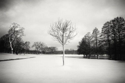 HakandStrand_17_fotografia_invierno_paisaje_belleza_PoesiaVisual_estimulante_StillMoments_BlancoYNegro