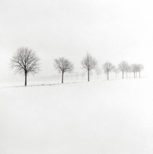 HakandStrand_5_fotografia_invierno_paisaje_belleza_PoesiaVisual_estimulante_StillMoments_BlancoYNegro