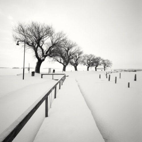 HakandStrand_8_fotografia_invierno_paisaje_belleza_PoesiaVisual_estimulante_StillMoments_BlancoYNegro