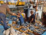 2 - Pescatori - foto sito Agi